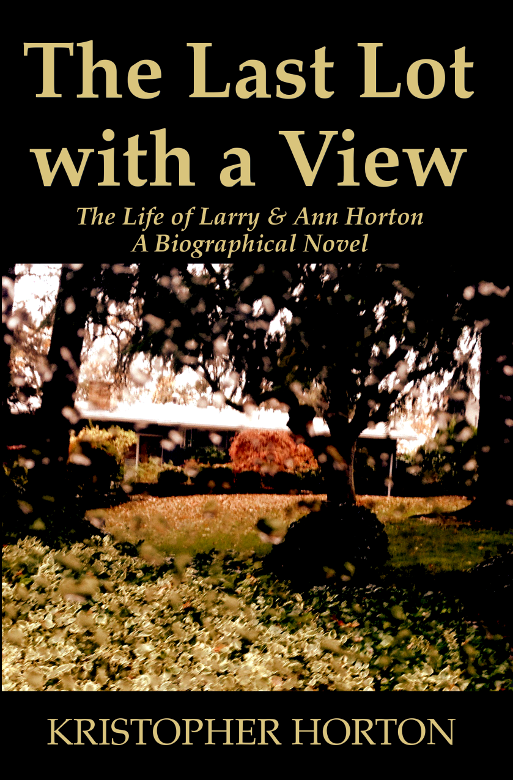 The Last Lot with a View, Cover Image